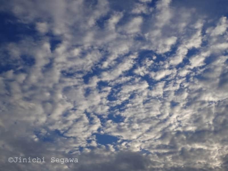 秋の空撮影