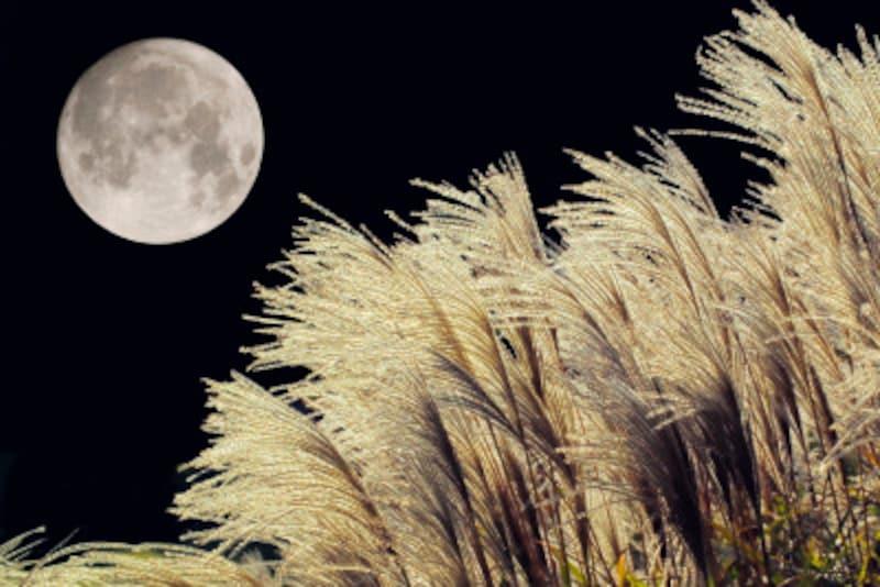中秋の名月を英語で説明できる?