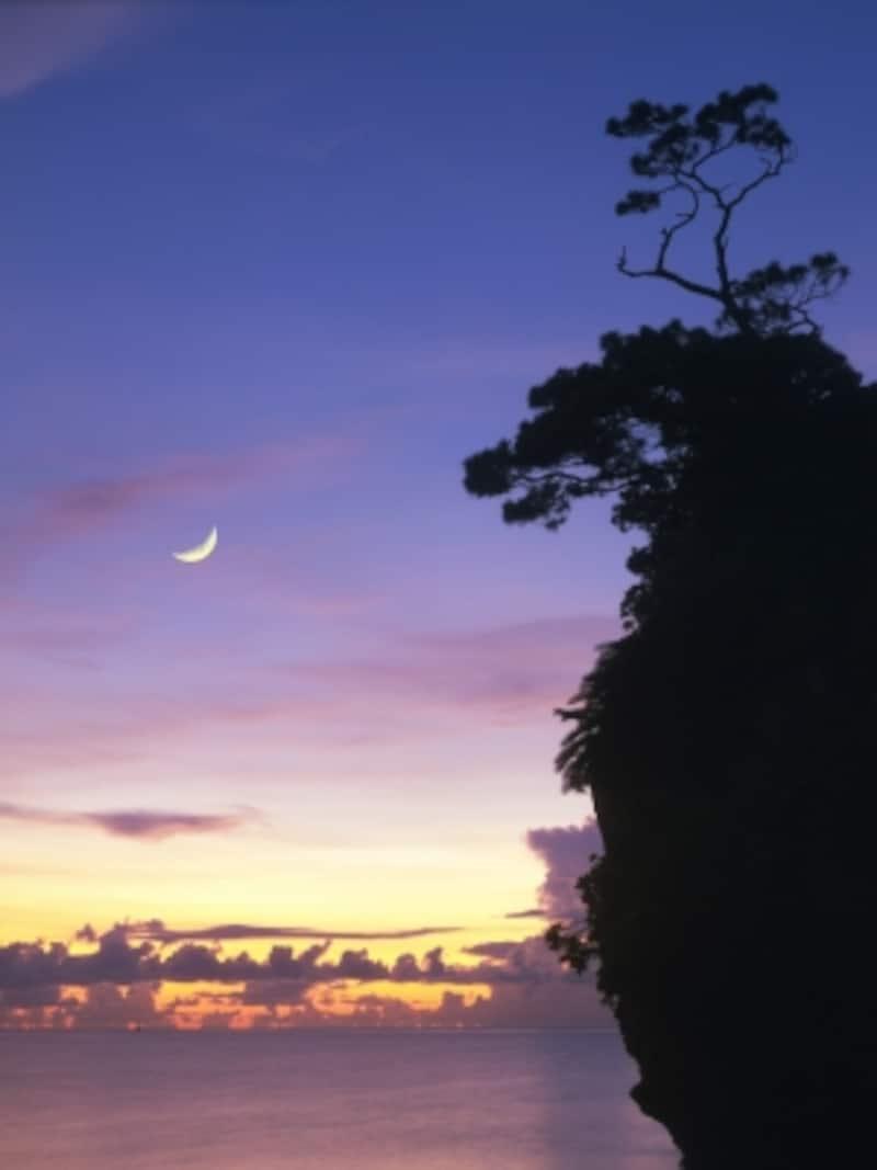 夕空に輝く月