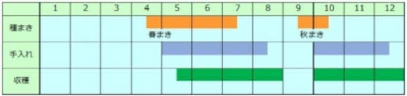 ルッコラundefined栽培カレンダー