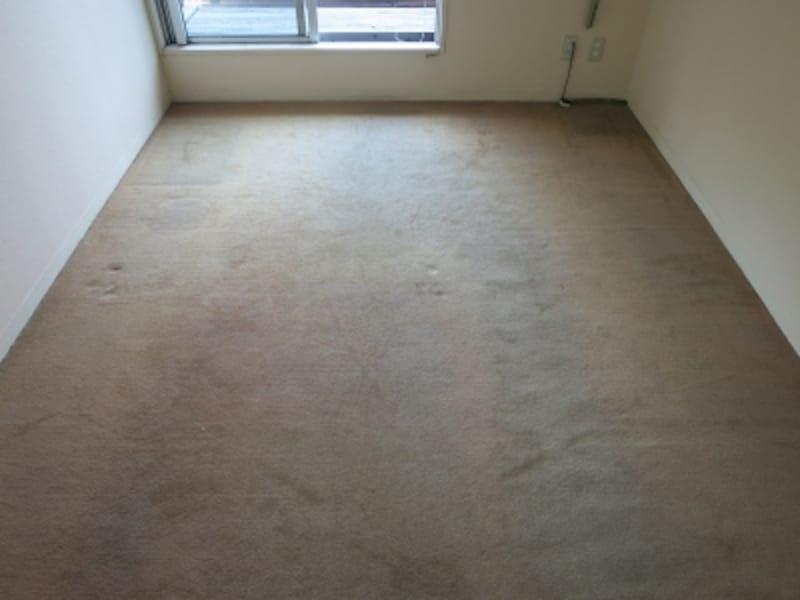 現状のカーペット部屋の画像3undefined