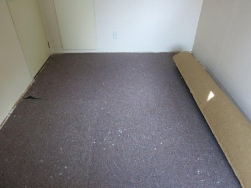 現状のカーペットを剥がしている様子の画像4undefined