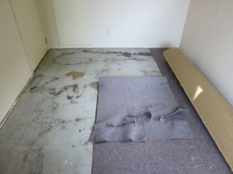 現状のカーペットを剥がしている様子の画像5undefined