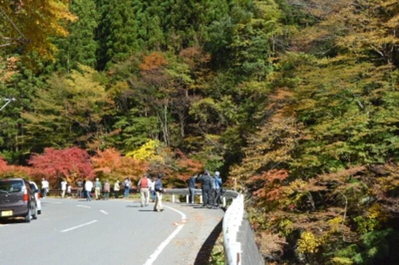 相原橋から中双里に向かう県道210号線沿線