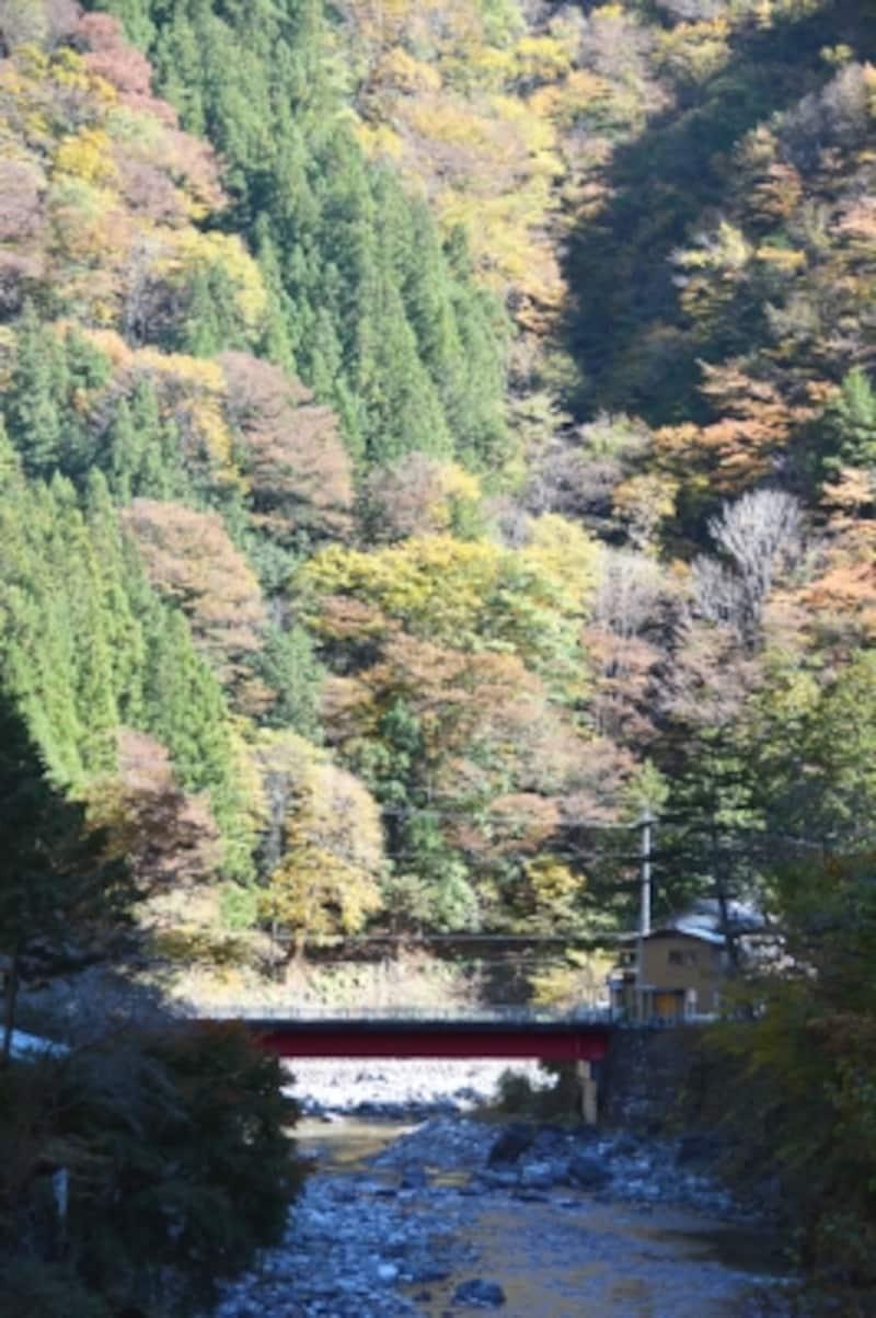 中双里で紅葉に包まれる小さな赤い橋