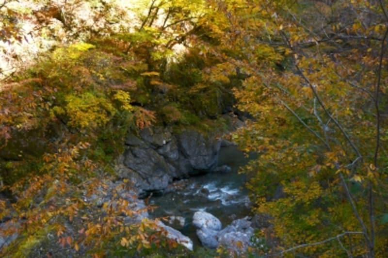 市子岩の奇縁の紅葉
