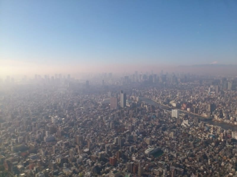 スカイツリーから眺めた東京の街