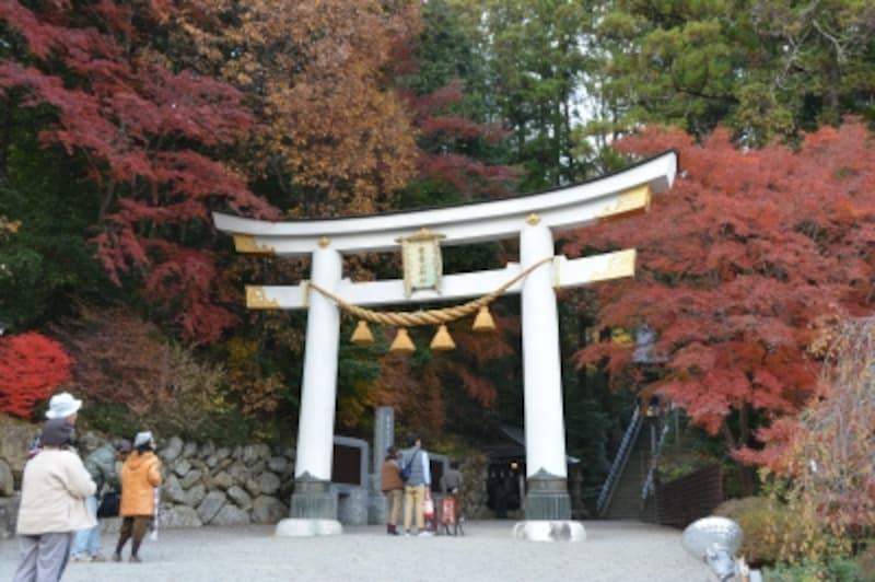 左右からモミジに挟まれた宝登山神社二の鳥居