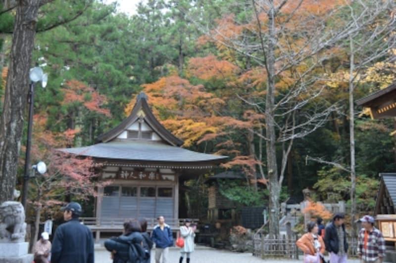 宝登山の自然に包まれる宝登山神社境内