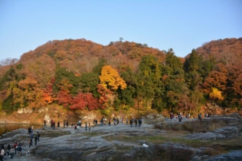 長瀞岩畳の紅葉