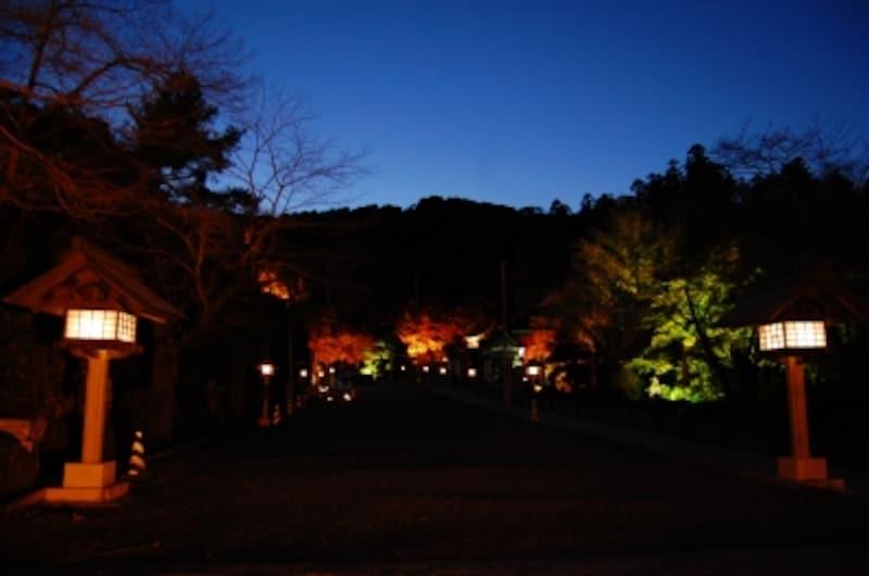 宝登山神社の参道