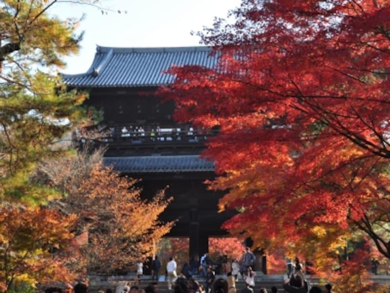南禅寺の大きな山門と紅葉