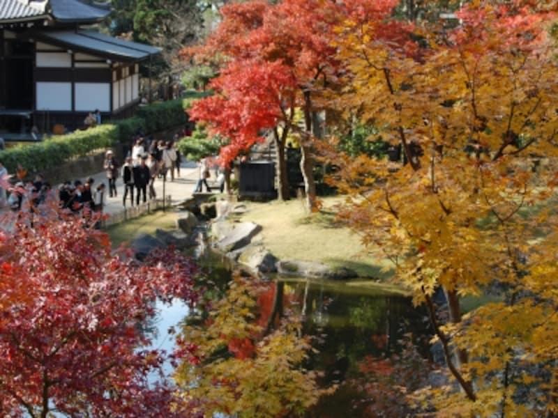 円覚寺境内の妙香池周辺の紅葉(2007年12月1日撮影)