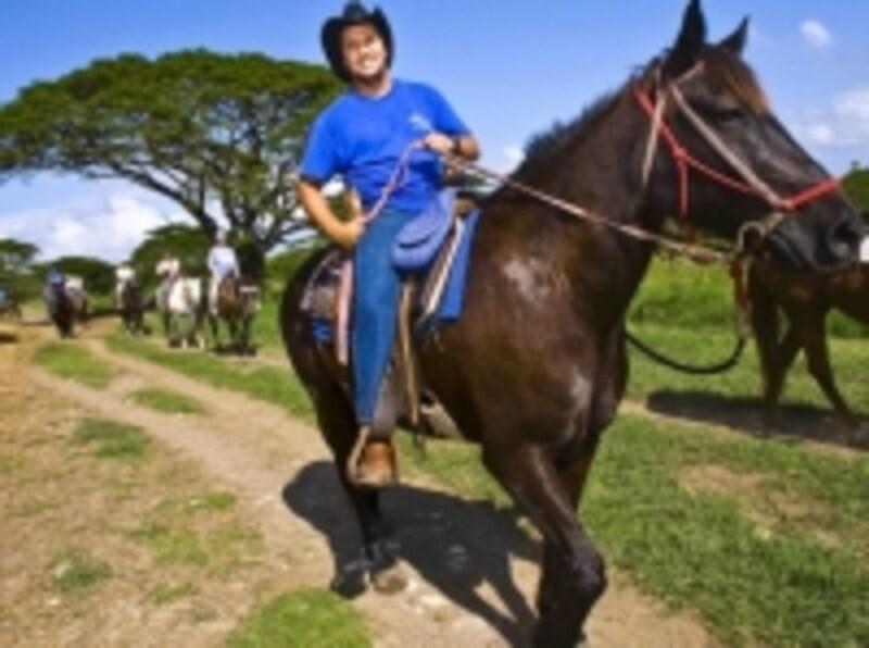 クアロア乗馬