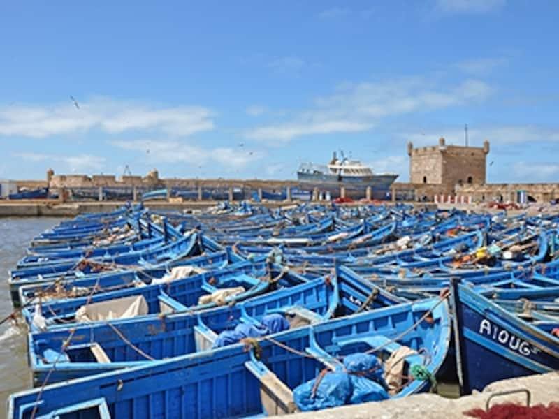 青で統一された漁船