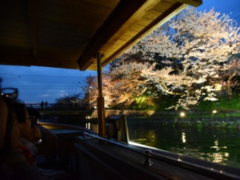 「十石舟」から眺めるライトアップされた夜桜