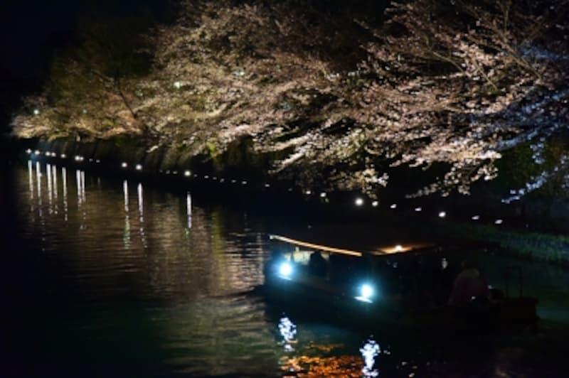ライトアップされた夜桜の下、琵琶湖疎水の流れを行く「十石舟」
