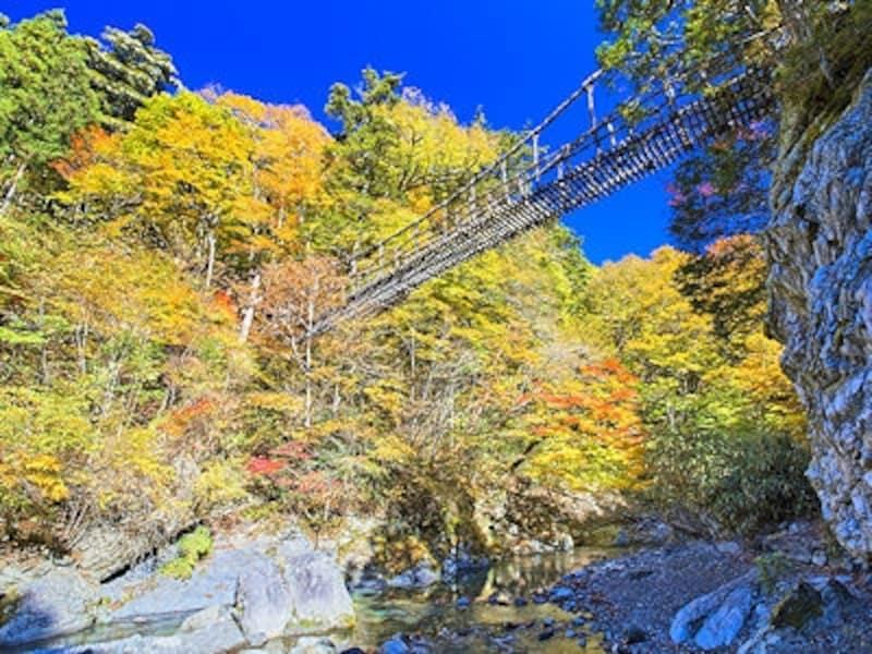 祖谷渓、奥祖谷二重かずら橋の紅葉