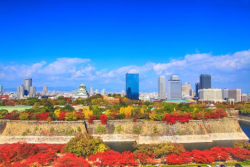 西日本を代表する紅葉名所の大阪城