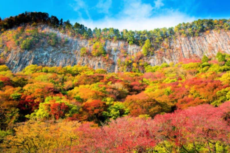 紅葉の屏風岩公苑