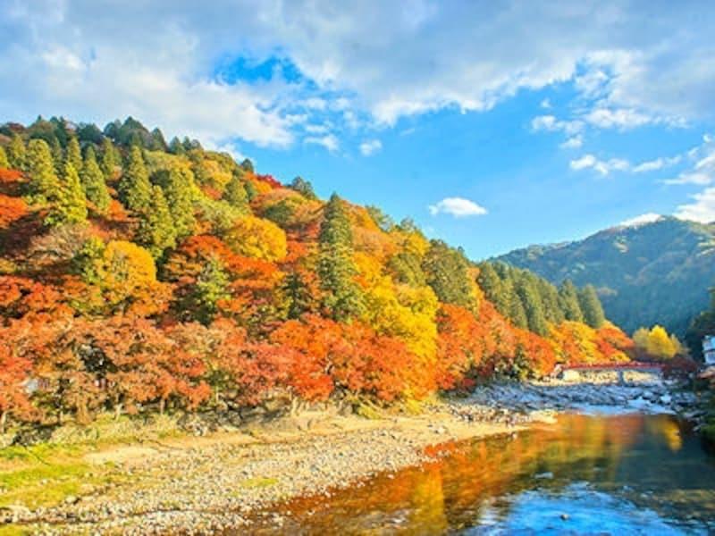 香嵐渓の紅葉の全景