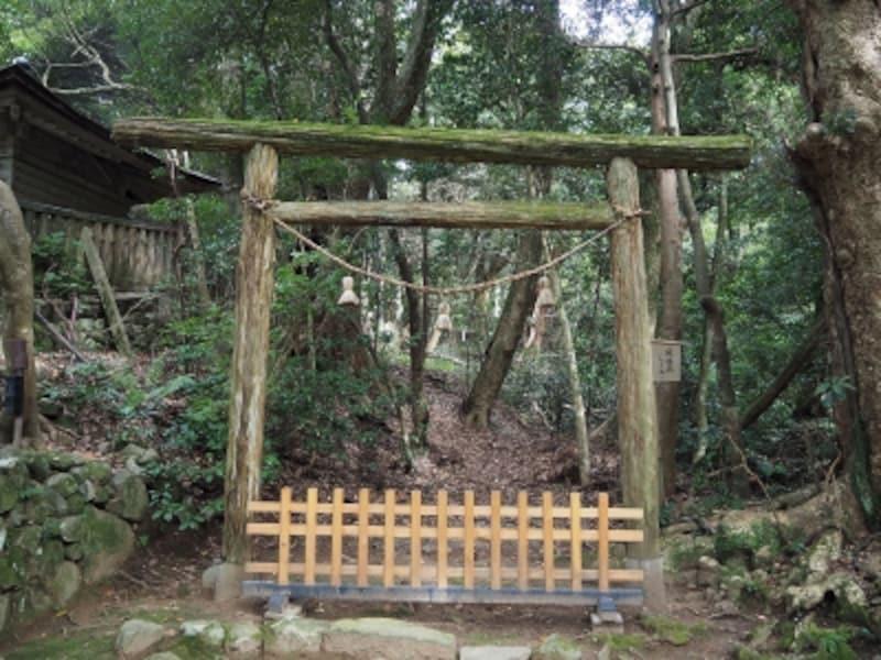 入らずの森の前に建つ鳥居@気多大社