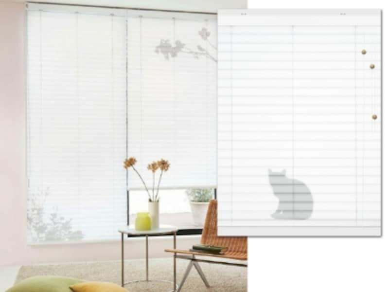 猫が隠れてるブラインド