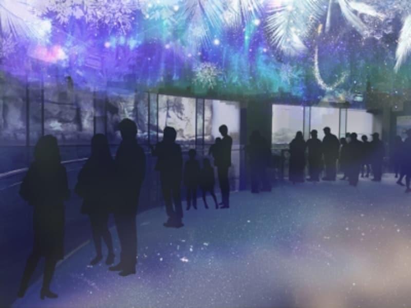 「アクアフォレスト」は昼と夜で雰囲気が変わる演出も(画像はイメージ、画像提供:横浜・八景島シーパラダイス)