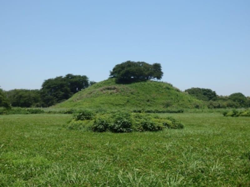 円墳では日本最大の丸墓山古墳