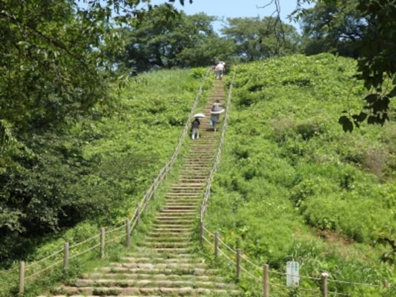 階段を登れば丸墓山古墳の頂上