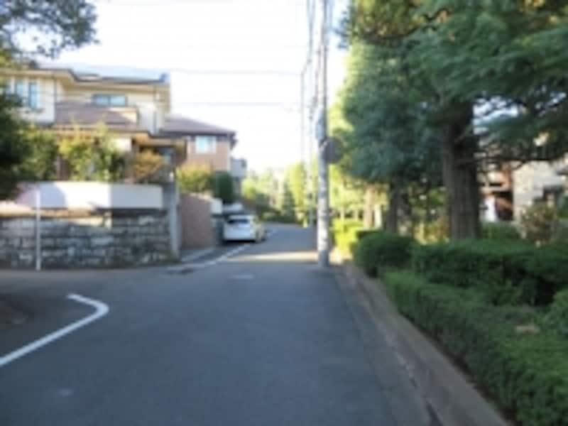 つつじが植えられている緑道