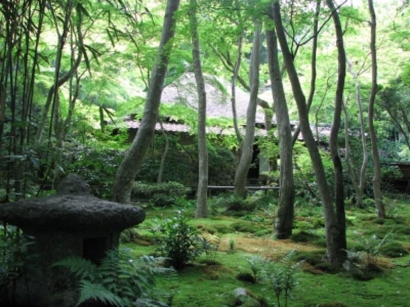 奥嵯峨の祇王寺