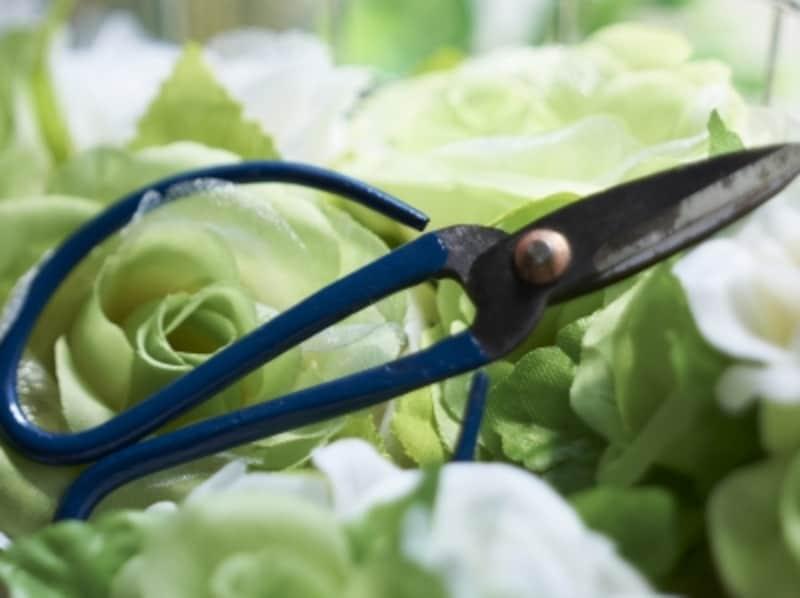 妻の目前でズボンを脱がし、持参した園芸用バサミで局部を切り取ったという。
