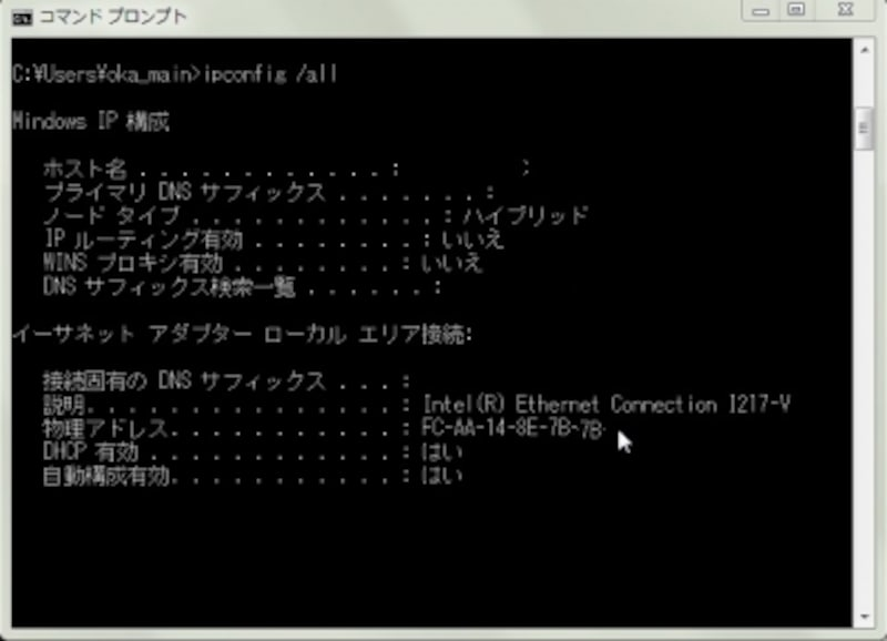 ipconfig /all 実際の画面 (必要がない値は省略してある)