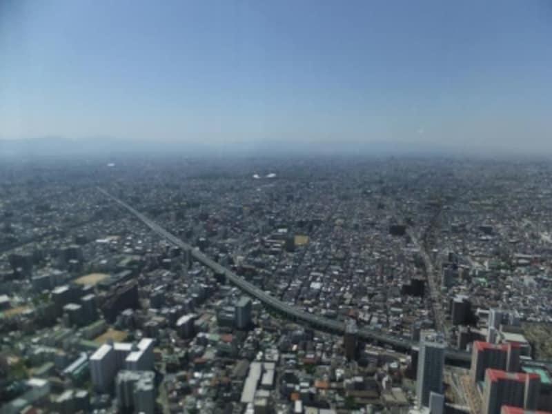 ハルカス300からの眺め(4)/南方向
