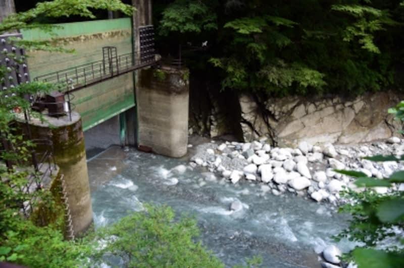 ダムの水を放水しているときは、「ユーシンブルー」は見られない