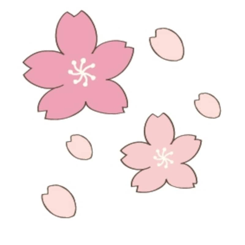 桜 花 イラスト カラー かわいい