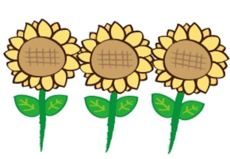 ひまわり 花 イラスト カラー かわいい