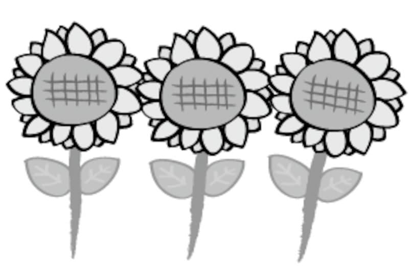 ひまわり 花 イラスト 白黒 かわいい