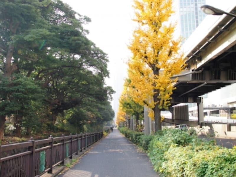 浜離宮恩賜庭園undefined東京都中央区浜離宮庭園1-1