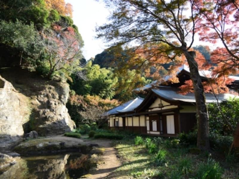 紅葉の季節の瑞泉寺本堂と石庭