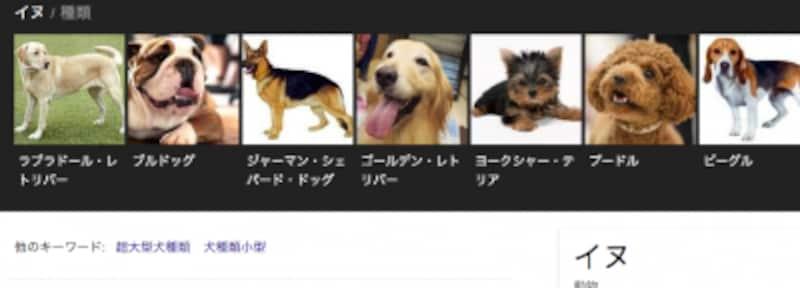 犬の種類も一覧で