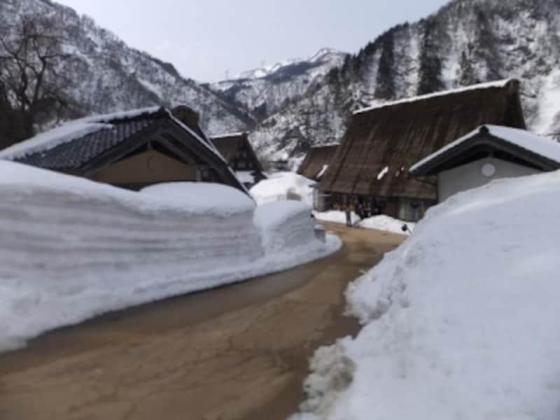 雪の五箇山・菅沼合掌集落(4)