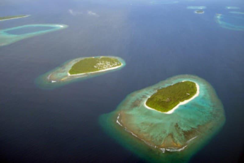 スキューバ,ダイビング,地球温暖化,サンゴ,白化,海水温,海面上昇,海水酸性化,IPCC,第5次評価報告書,COP21,パリ協定