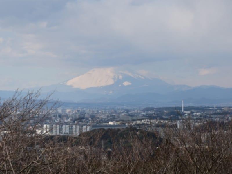 冬は富士山も見える(六国見山展望台より)