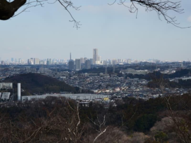 横浜の風景も見える(六国見山展望台より)