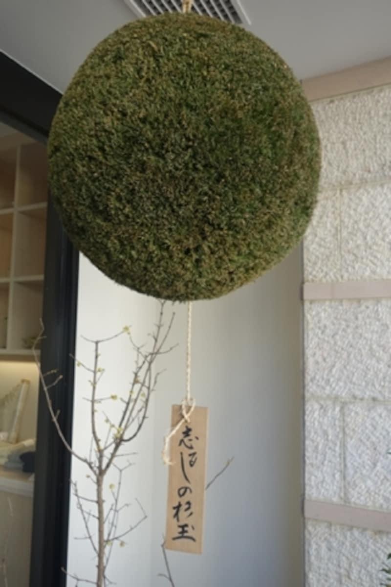 酒蔵??入り口には杉玉が下がっています。