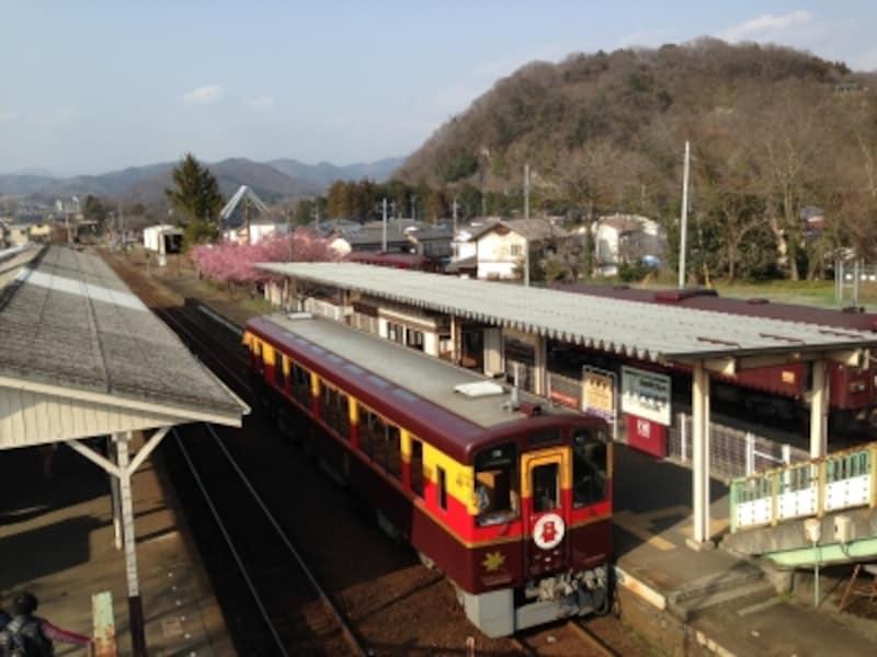 トロッコ列車「わっしー号」