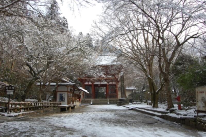 雪に覆われた室生寺参道と仁王門