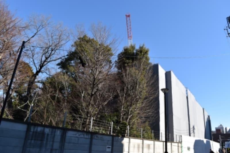 「ザ・パークハウス国分寺緑邸」の建設地